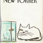 pisica New Yorker